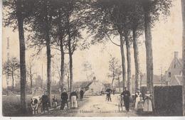 Entrée Hamont - Loozen-Limburg - Inkom - Geanimeerd - 1908 - Hamont-Achel