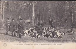 77---FONTAINEBLEAU--chasse à Courre En Forêt De Fontainebleau---la Meute---voir 2 Scans - Fontainebleau