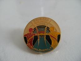 Pin's Tir à L'arc Les Archers Des Deux Rives De ROMANS.BOURG De PEAGE Compagnie D'Arc Archerie Cible Fléche BOUQUET - Tiro Con L'Arco