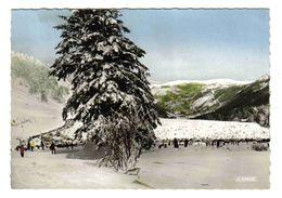 63 Le Mont Dore Le Sancy En 1965 Très Belle Carte Dentelée Pistes De Ski Skieurs - Le Mont Dore
