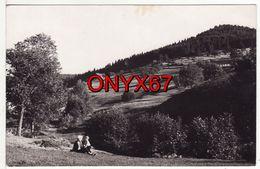 Carte Postale Photo ORBEY (Haut-Rhin) Vue Sur Ferme Auberge ? Montagne 2 SCANS - Orbey