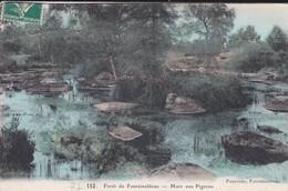 77-----forêt De Fontainebleau---Mare Aux Pigeons---voir 2 Scans - Fontainebleau