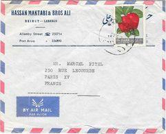 LIBAN Enveloppe Poste Aérienne Publicitaire BEYROUTH Date Illisible à  PARIS - Lebanon