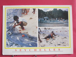 Seychelles - Mahé - Fish Catch At Beau Vallon - Scans Recto-verso - Seychelles