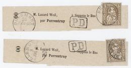 Délemont Par Porrentruy  2 Bandes De Journaux Cachet P.D. M. Weil à Seppois Le Bas Judaïca - 1854-1862 Helvetia (Non-dentelés)