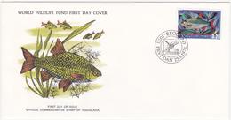 1976 / Lot De 3 Enveloppes 1er Jour Du Fonds Mondial Pour La Nature / FDC / YOUGOSLAVIE / YUGOSLAVIA - FDC