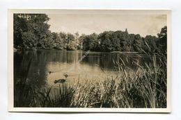 Buscot Park (lake View) - England