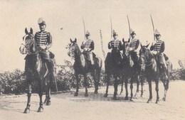 BELGIQUE / BELGIE / 2 ME CHASSEURS A CHEVAL / 2 DE JAGERS TE PAARD - Regiments