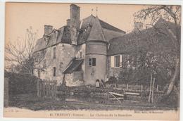 CPA- TREIGNY - Le Château De La Bussière-petite Animation -dép89- TBE - Treigny