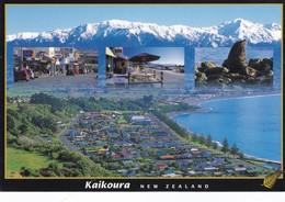 Postcard Kaikoura New Zealand My Ref  B22491 - New Zealand