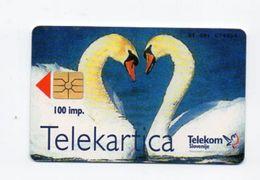 Telekom Slovenije 100 Imp. Phonecard - Labodi - Slowenien