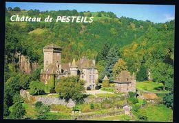 CP 15 - Cantal - Polminhac Château De Pesteils - Frankrijk
