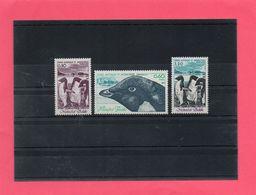 3 Valeurs  ('Faune De L'Antarctique ) - Terres Australes Et Antarctiques Françaises (TAAF)