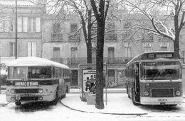 Ass.sauvegarde.patrimoine Transports TOULOUSE...bus SAVIEM  CHAUSSON... - Autobús & Autocar