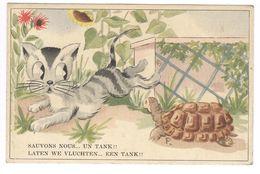 1948 - COLOPRINT SPECIAL 214 - KAT EN SCHILDPAD -  TRES BELLE CARTE - ZEER MOOIE KAART VRASENE - ZIE TEKST VOIR TEXTE - Fancy Cards