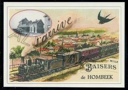 HOMBEEK .... Train Souvenir Creation Moderne Serie Limitee - Belgien