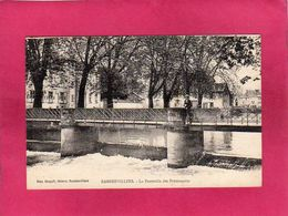 88 Vosges, Rambervillers, La Passerelle Des Promenades, Animée, (Mme Haegeli) - Rambervillers