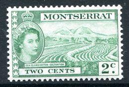 Montserrat 1953-62 QEII Definitives - 2c Sea Island Cotton - Cultivation MNH (SG 138) - Montserrat