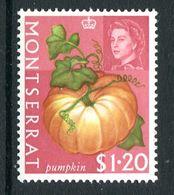 Montserrat 1965 Fruit & Vegetable - $1.20 Pumpkin MNH (SG 174) - Montserrat