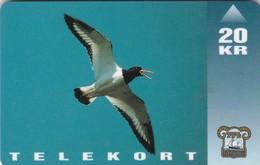 Faroe Islands, OD-007, Oystercatcher, Birds, Only 15.000 Issued, 2 Scans. - Faroe Islands