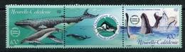 RC 8270 NOUVELLE CALÉDONIE N° 844 / 845 FAUNE BALEINE A BOSSE NEUF ** - Nueva Caledonia