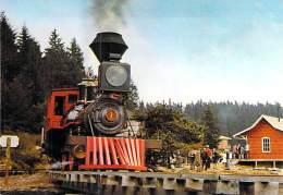 ** Lot De 2 Cartes ** PETITS TRAINS TOURISTIQUES ( BOURBONNAIS Allier Roanne / Vichy ) LA LOGE DES GARDES (2/4) - Trains