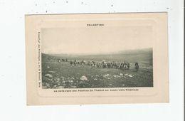 LA CARAVANE DES PELERINS DU THABOR EN ROUTE VERS TIBERIADE (PALESTINE) - Israele