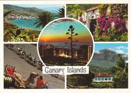 ISLAS CANARIAS - Carte Multivues (Diversos Aspectos) - - Espagne