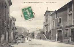 SAINT FELIX DE LODEZ   L'AVENUE DE RABIEUX - France