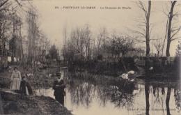 FONTENAY LE COMTE   (85) Carte Photo De La Chaussée Du Moulin - Fontenay Le Comte