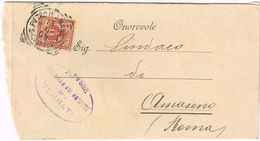 X1452 2 Centesimi Floreale - 1905 Viaggiata Da San Pietro In Amantea (Cosenza) A Amaseno (Frosinone) - Terrati (Lago) - 1900-44 Vittorio Emanuele III