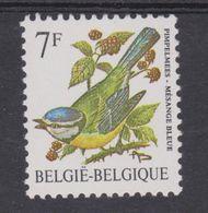 BE 1987 - N°2261 XX - Gomme Grise Non Lignée   - Mésange Bleue - 1985-.. Oiseaux (Buzin)