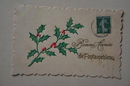 """Carte """"Bonne Annee De FONTAINEBLEAU-branche De Houx - Nouvel An"""