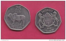 BOTSWANA, 2013, 1 Off Nicely Circulated Coin, 25 Thebe, C3404 - Botswana