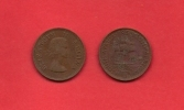 SOUTH AFRICA, 1955,  Circulated Coin, 1/2 Penny, QE II, Km 45, C1442 - South Africa