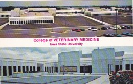 Iowa Ames College Of Veterinary Medicine Iowa State University - Ames