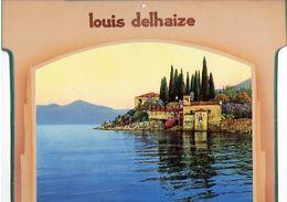 Ancienne Publicité Murale En Carton Pour Louis Delhaize (format 30 X 24 Cm) - Publicités