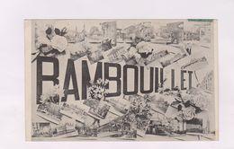 CPA DPT 78 RAMBOUILLET - Rambouillet