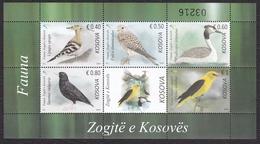Kosovo 2018 Fauna, Birds, Hoopoe Common Kestrel Falcon Great Crested Grebe Common Starling Golden Oriole MNH - Altri
