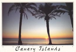 ISLAS CANARIAS - Coucher De Soleil (Puesta De Sol) - - Espagne
