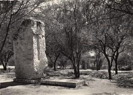 11852-VILLAGGIO DUCA DEGLI ABRUZZI(SOMALIA)-EX COLONIE ITALIANE-FG - Guerra 1939-45