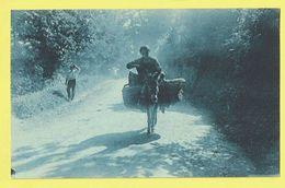 * Au Pays Basque (Dép 65 - Hautes Pyrénées - France) * (R. Bergevin 9960) Attelage Ane, Ezel, Donkey, Animée, Rare, Old - Frankrijk