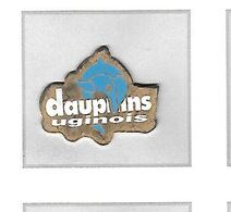 Pin's  Sport  NATATION, DAUPHINS  UGINOIS  CLUB  à  UGINE  ( 73 ) - Swimming