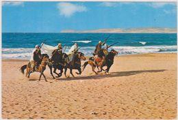 ALGERIE,AFRIQUE DU NORD,équilibriste à Cheval,FANTASIA,ARME,FUSIL,COURSE,bord De Mer,sable - Oran