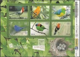 BRAZIL - SS BIRDS, LUBRAPEX  2009 - MNH - Birds