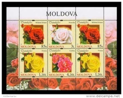 Moldova 2012 Mih. 805/08 Flora. Flowers. Roses (M/S) MNH ** - Moldavie