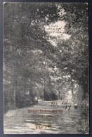 Slovakia / Hungary: Szobránc - Fürdö (Sobranecké Kúpele), Forest Walkway   1913 - Slovaquie