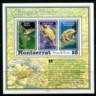 Montserrat 1991 Frogs And Toad MS MNH (SG MS863) - Montserrat