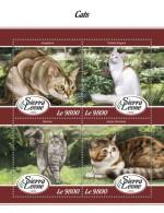 Sierra Leone  2018 Cats S201802 - Sierra Leone (1961-...)