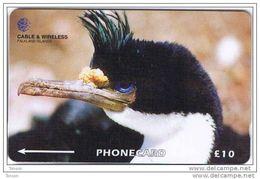 Falkland Islands,  FLK229A, £10, King Cormorant, Penguin, 229CFKA. - Falkland Islands